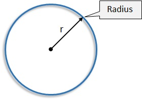 what is a radius? - free mathematics lessons and tests, Human Body
